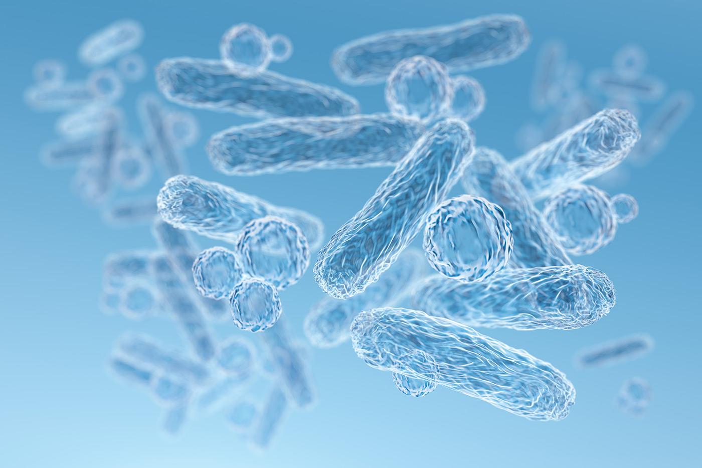 Oral Microbiome